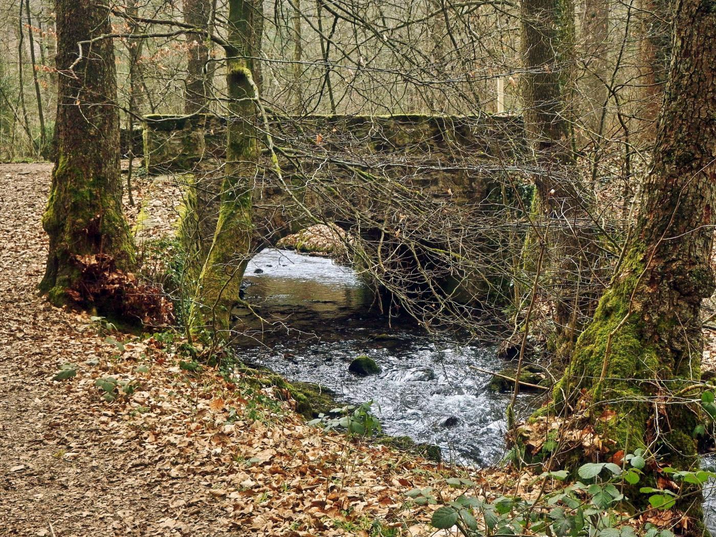 Brücke über den Silberbach