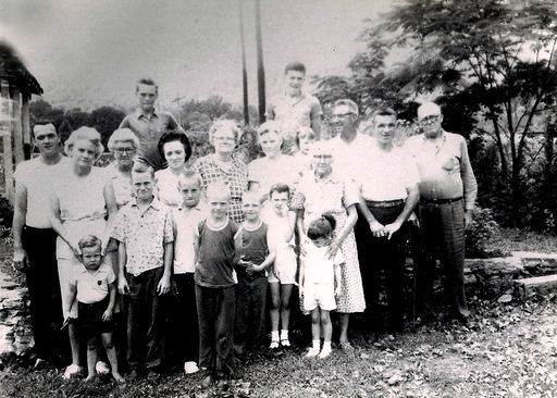 Some of Alvis Cade and Sara (TERRY) Hatfield descendants.
