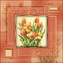 tulip frame hugs
