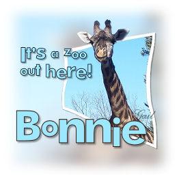 bonnie-gailz0206-noboundries.jpg