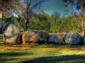 Cowra Japanese Gardens Rock Farm 002