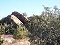 Vasquez Rocks Dec09 080