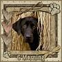 dcd-G'Morning-In The Hay