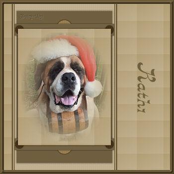 Christmas 11 75Kathi