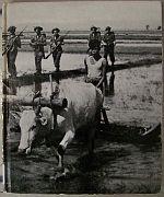 World War II v09 China-Burma-India