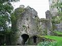 Blarney Castle05