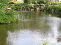 Morikami Japanese Gardens01