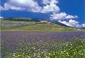 Monti Sibillini NP (PG)