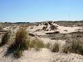 Holland's desert  :-)