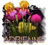 Adrienne - 3094