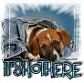 1It'sHotHere-blujeanpup-MC